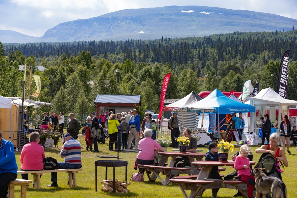 bruksvallarna game fair 15