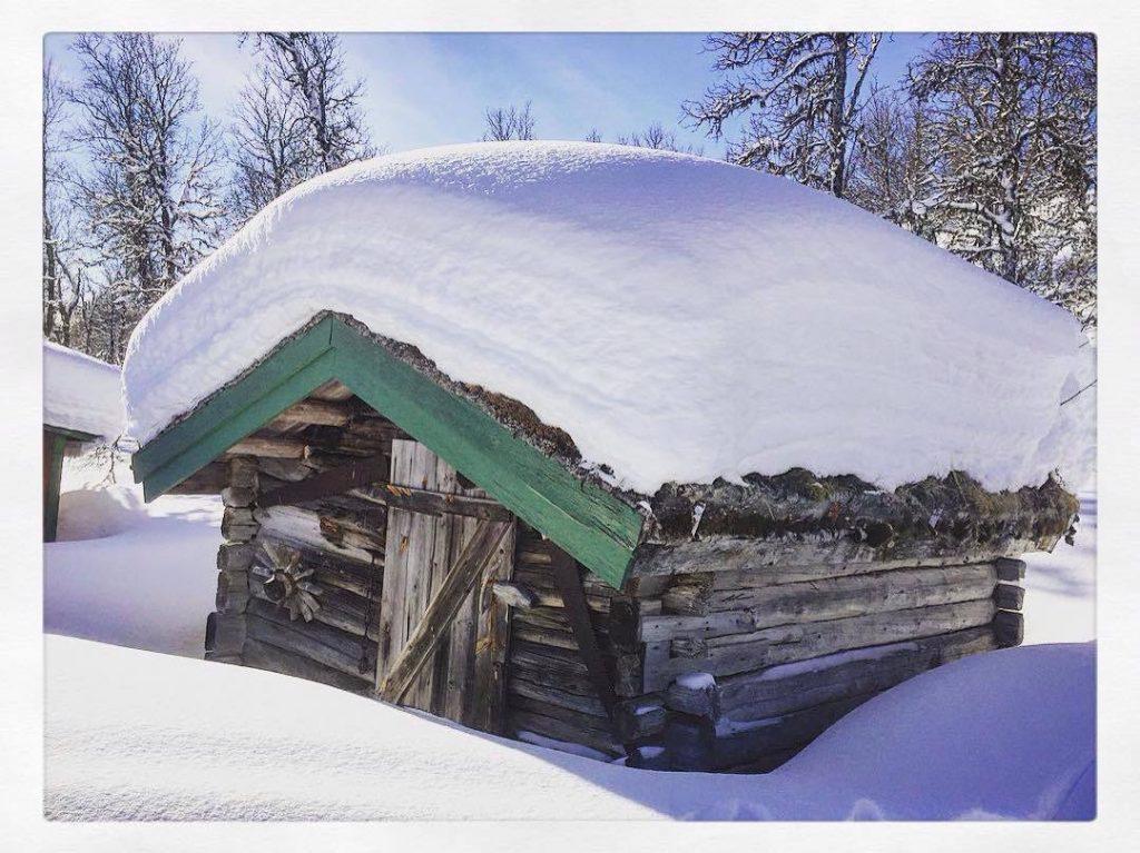 snötillgång fjället