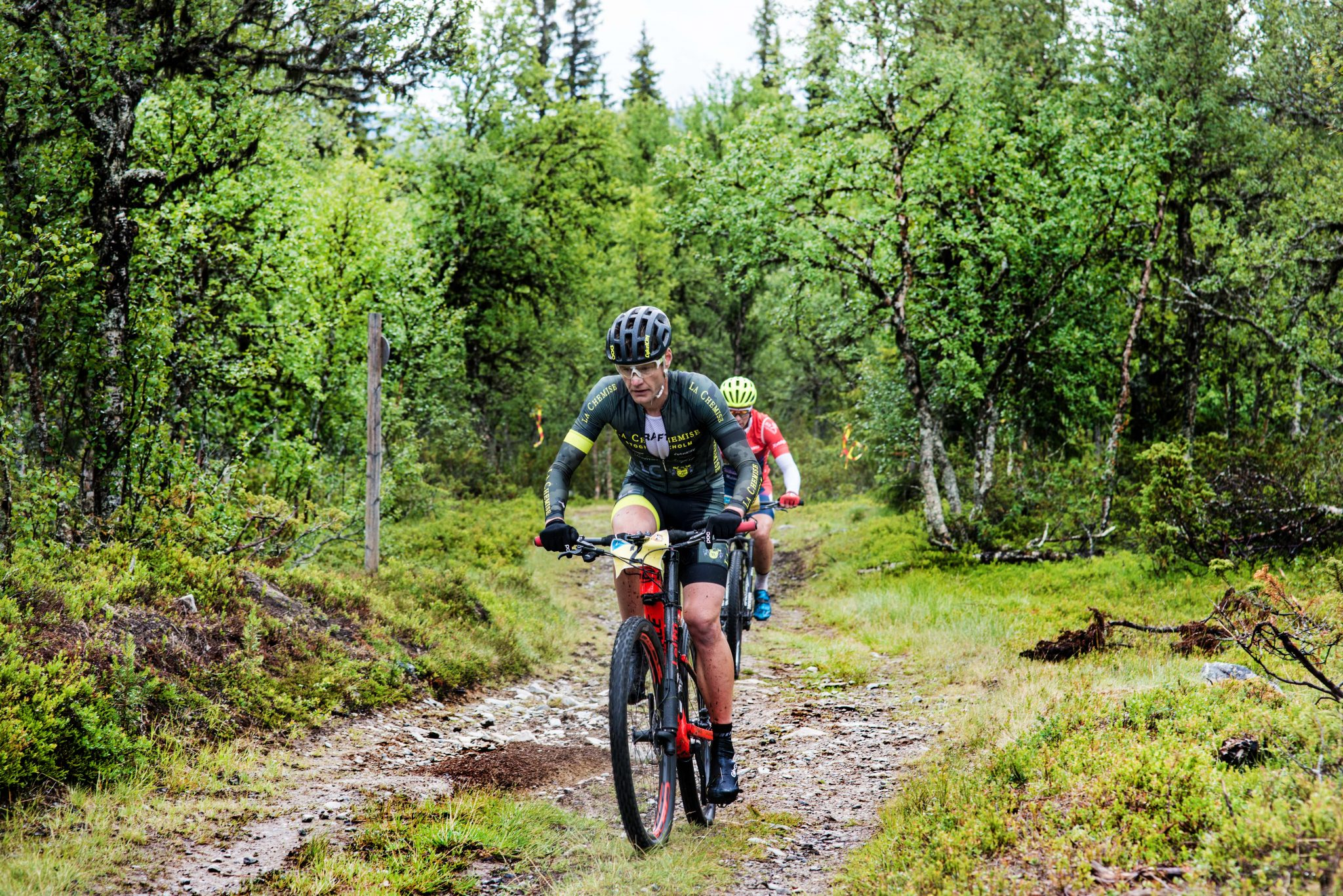 Jonas Pettersson